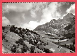 74 LE PETIT BORNAND-les-GLIERES - Cenise Et Pointe Blanche - Frankrijk