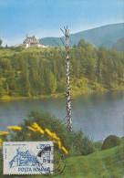 TOURISM, FISH VALLEY CHALET, CM, MAXICARD, CARTES MAXIMUM, 1991, ROMANIA - Holidays & Tourism