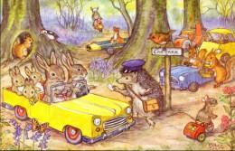 PK - Fantasie Fantaisie - Animals - Woodland Car Park - Illustr. Molly Brett - Animaux Habillés