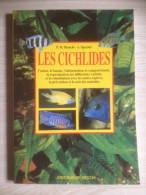 - Livre- Aquarium - Poissons - Cichlidés - éd De Vecchi - 1998 - - Aquariophilie