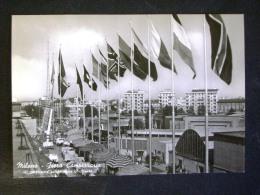 LOMBARDIA  -MILANO -FIERA CAMPIONARIA -F.G. LOTTO N°472 - Milano (Mailand)