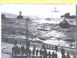 """Cart.- NAVI - Livorno - La Tragedia Della """" Grommet Reefer """"- Si Spezza In Due Presso L'Accademia Navale,16-12-1952. - Chiatte, Barconi"""
