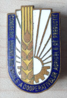 Romania, 1970's, Vintage Pin/Badge - Congress Of The National Union Of Agricultural Production Cooperatives - Associations