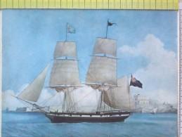 Cart.- NAVI -  N.S. Del Boschetto - Brigantino Capitano E Armatore - G.B. Schiaffino Di Camogli. - Chiatte, Barconi
