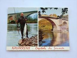 Carte Postale Ancienne : NAVARRENX : Capitale Du Saumon - Autres Communes