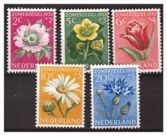 Nederland / Netherlands 1952 Flowers Rose Tulip Marsh-marigold Ox-eye Daisy Cornflower MNH - Periodo 1949 – 1980 (Juliana)