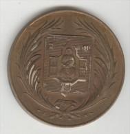 Médaille Ecole Nationale De Musique De Montpellier 41 Mm - Francia