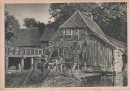 AK Alte Wassermühle Im Sachsenwald   (19717) - Lauenburg