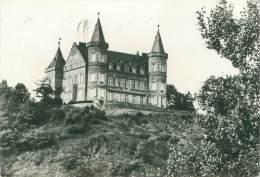 CPM - Le Château Royal De CIERGNON-sur-LESSE - België