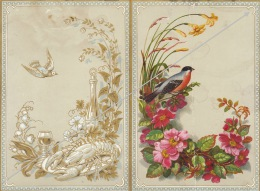 Menu 1881 Belle Illustration - Menus