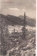 DAVOS Platz TTB Timbrée - GR Graubünden