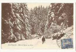 Cp, 39, Jura, Bois De Sapins En Hiver, Voyagée 1930 - France