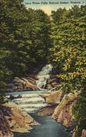 Lace Water Falls, Natural Bridge, Virginia - United States