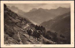 Schiers  Säumer - GR Graubünden