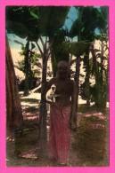 Colombo - Ceylon - Missions Des Oblats De Marie Immaculée à Ceylan - Bons Compagnons - NELS - THILL - Colorisée - Sri Lanka (Ceylon)