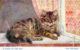 Postkaart / Post Card / Carte Postale / Cat / Chat / Brown Tabby Persian / Illust. M. Gsar / Ed. J. Salmon LTD Sevenoaks - Katten