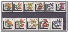 Burundi 1967, Postfris MNH, Flowers - 1962-69: Ongebruikt
