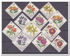 Burundi 1966, Postfris MNH, Flowers - 1962-69: Ongebruikt