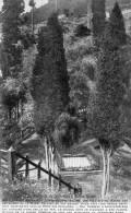 Afrique Tombeau De Napoleon A Sainte Helene - Saint Helena Island