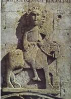 X La Cattedrale Di Matera Nel Medioevo E Nel Rinascimento Pizzi Arti Maxi In Cofanetto F.to 30x38 - Libri, Riviste, Fumetti