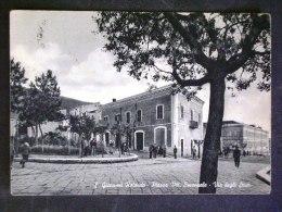 PUGLIA -FOGGIA -SAN GIOVANNI ROTONDO -F.G. LOTTO N°473 - Foggia