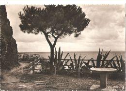 RIOMAGGIORE - MANAROLA ( LA SPEZIA ) VIA DELL'AMORE - EDIZ- FOTO RIO - 1954 - La Spezia