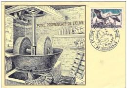 FRANCE Foire De L'olive 83 Draguignan 1973 - Agricultura