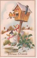 Bonne Année : oiseaux au nichoir, canards, houx
