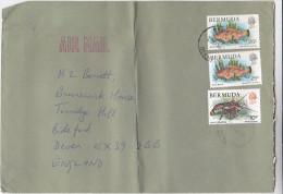 1983 Air Mail BERMUDA COVER  FISH , LOBSTER Stamps - Bermudes
