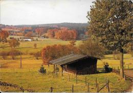 AMEL - Iveldingen - Montenau - Amel