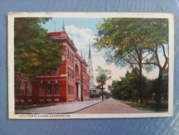 CP Carte Postale Postcard USA Oglethorpe Avenue Savannah GA (3) - Savannah