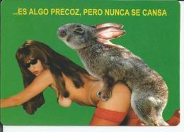 Calendario De Bolsillo Chistes Eroticos 2005 (31) - Small Pocket Calendar Erotic Humour 2005 - Calendarios