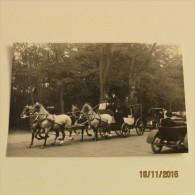 Carte Postale PARIS 1900 : PROMENADE DANS LE BOIS DE BOULOGNE (Reproduction) - Parcs, Jardins