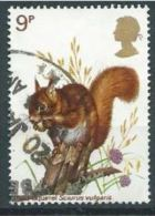 GB 1977 Wildlife: Eurasian Red Squirrel  9p.  SG 1041 SC 818 MI 747 YV 833 - Used Stamps
