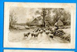 AVR489, Le Retour Du Troupeau De Mouton, Zurück Zum Stall, E. Walbourn PINXT, Circulée 1910 - Agriculture