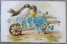 litho chromo illustrateur KOPAL 536 oiseau oiseaux sur brouette bois myosotis 19