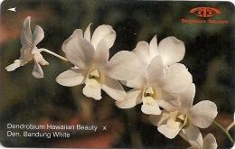 Singapore - Hawaiian Beauty, Orchids, 14SIGC, 1991, 630.000ex, Used - Singapur