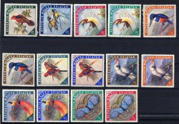 Indonesia - Maluku Selatan - Birds ** - Viñetas De Fantasía