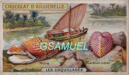 Chromo - Edition De La Chocolaterie D'Aiguebelle (Drôme). - Les Coquillages - La Mitre Et Le Cardium Indien. - Aiguebelle