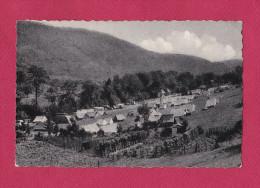 LUXEMBOURG  ECHTERNACH (  CAMPING PARC ) - Cartes Postales