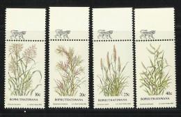 BOPHUTHATSWANA  1984  INDIGENOUS GRASSES  SET  MNH - Planten