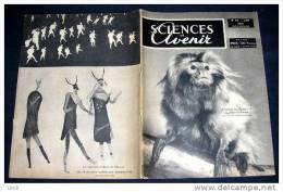 SCIENCES ET AVENIR. 1950. 040. L' EVOLUTION DES PRIMATES. PEINTURES RUPESTRES BOCHIMANES - Science