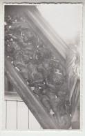 Poperinge St Bertinuskerk fotokaart van kuntschatten, op agfa papier. Reeks priv� foto�s (pk22699)