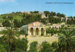 Basilica And Gardens Of Gethsemane, Old City, Jerusalem