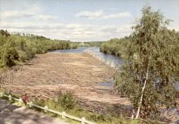 Sverige  -  Värmland - Parti Fran Klarälven - Flößerei Auf Dem Klarälven  -  Län Värmland  -  Ca.1970 - Suède