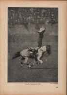 Cowgirl Auf Galloppierendem Pferd-Druck, Entnommen Aus Velhagen Und Klasings- Monatsheften/ 1924 - Zeitungen & Zeitschriften