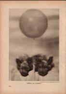 Stilleben Mit Luftballon - Druck, Entnommen Aus Velhagen Und Klasings- Monatsheften/ 1924 - Zeitungen & Zeitschriften