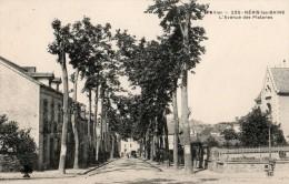 03 - NERIS LES BAINS - AVENUE DES PLATANES - Neris Les Bains