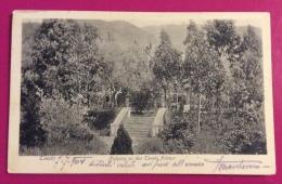 MONTENEGRO - TEODO  : SCALINATA AI CAMPI DA TENNIS - VIAGGIATA  A POLA NEL 1904 - Montenegro