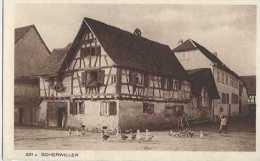 Scherwiller - 231 A - Alsace - Pas Circulé - Animée - Animaux De Ferme - Sépia - TBE - A - Autres Communes